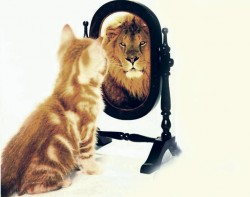 pravo-samopouzdanje