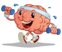 mozak-366