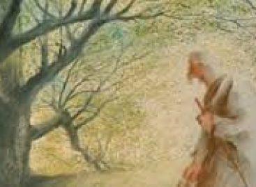 Човек који је садио дрвеће