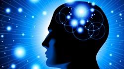 mozak-kviz