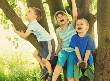 Физички активна деца постижу бољи успех у школи