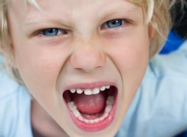Када дете бесни