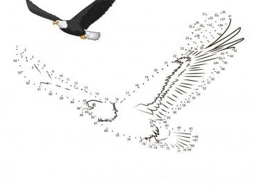 Нацртај птицу и научи да бројиш