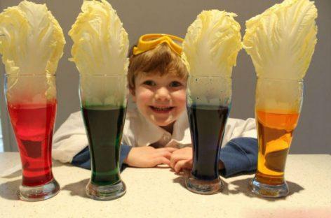 Три једноставна експеримента које вреди показати деци.