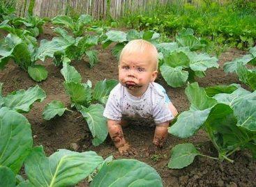 Родитељство је као баштованство