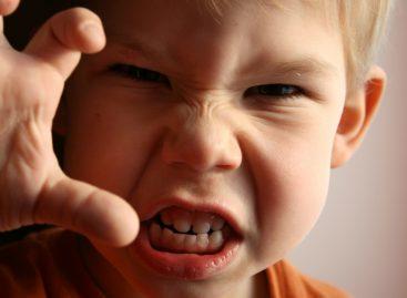 Једина исправна реакција када дете удара, гризе, гребе…