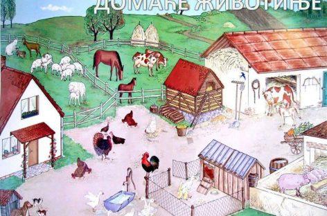 Домаће животиње