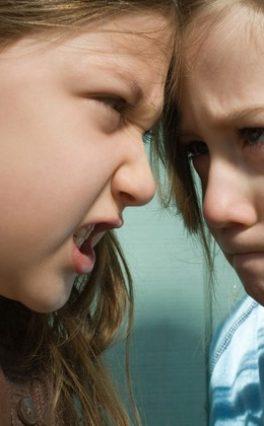 Др Стеван Несторов: Данас су деца углавном пасивни посматрачи