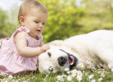 Деца која од рођења живе са псом су здравија