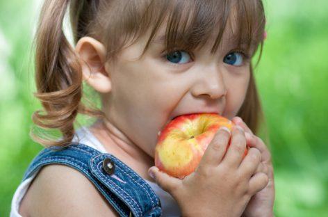 7 намирница које подстичу развој дечјег мозга