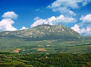 Због чега  би на планину Јавор требало одвести свако дете?