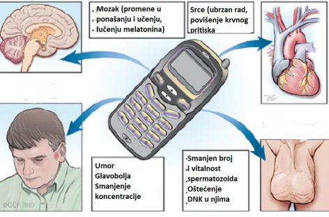 Биомагнетизам – ефекат мобилних телефона на здравље људи
