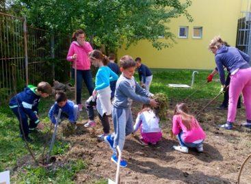 Učiteljica Lela i njeni đaci su uzor celoj Srbiji