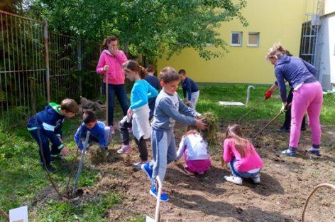 Учитељица Лела и њени ђаци су узор целој Србији