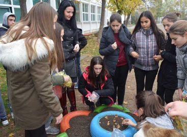 Школа из Зрењанина једина из Србије у светском друштву
