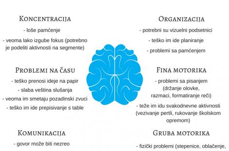 Vodič za roditelje i nastavnike – diskalkulija, disleksija, dispraksija i disgrafija