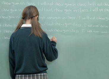 """Учитељи нису дужни да уче моју децу да кажу """"молим"""" и """"хвала"""""""