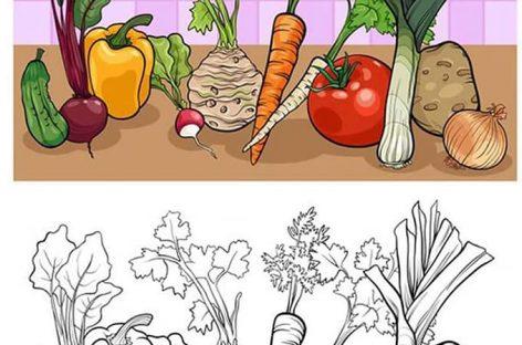 Učimo i bojimo – voće i povrće