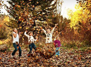 Састави о јесени (одабрани радови са конкурса – 4. разред)