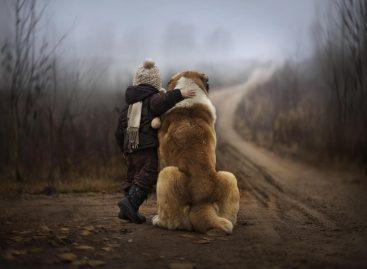 Прича о дечаку и псу: Јел' Ви знате шта је Ваше дете мени учинило?