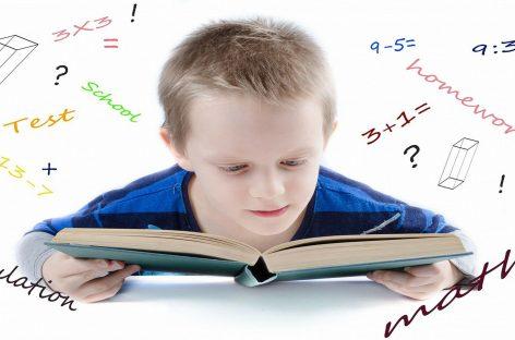 Profesor Milica Novković: Šta treba da uradite prvih dana raspusta da bi vaše dete uvek učilo samo